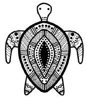 Turtle symmetry